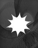 The Summer 2013 Wolfram Interns